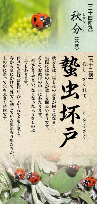 72-43.jpg